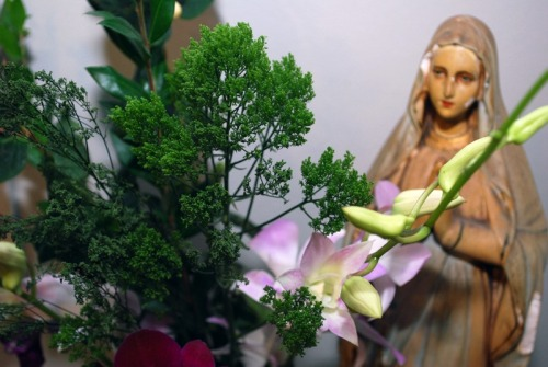 flowersorch4